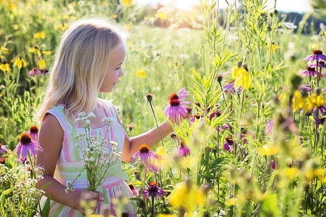 可能性の花を開花させたい。-MyBloom